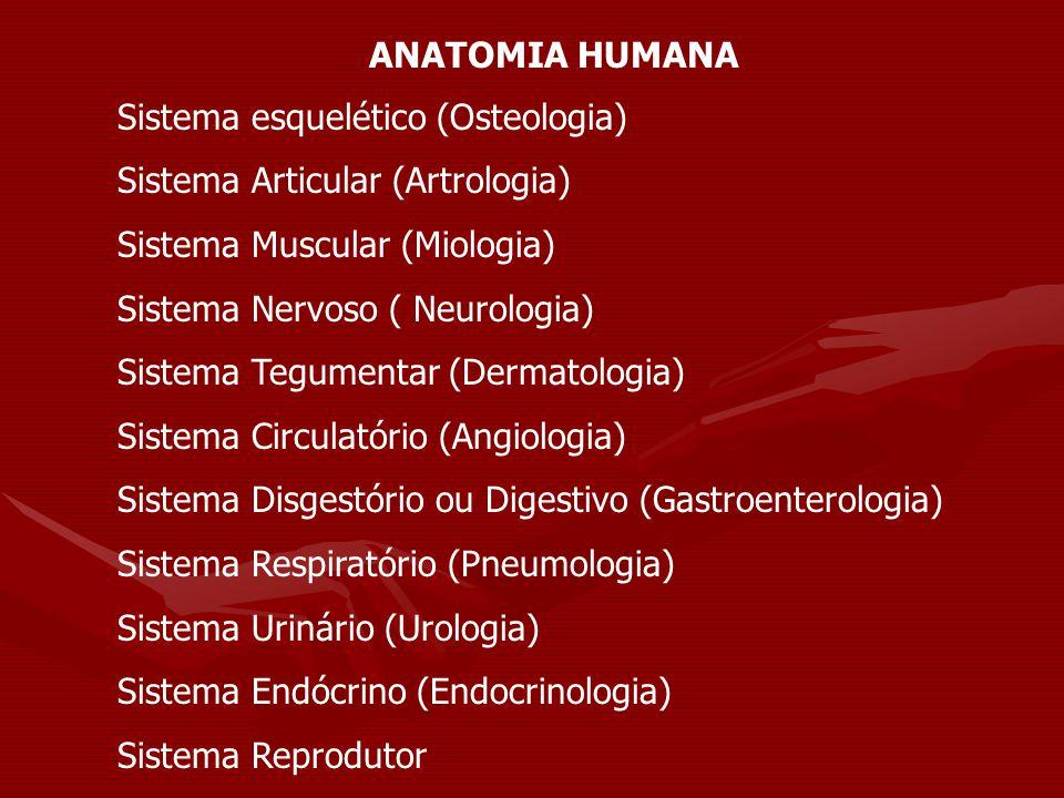 ANATOMIA HUMANA Sistema esquelético (Osteologia) Sistema Articular (Artrologia) Sistema Muscular (Miologia) Sistema Nervoso ( Neurologia) Sistema Tegu
