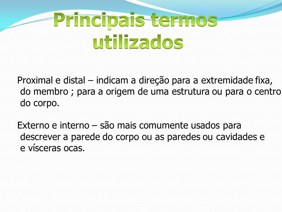 Proximal e distal – indicam a direção para a extremidade fixa, do membro ; para a origem de uma estrutura ou para o centro do corpo. Externo e interno