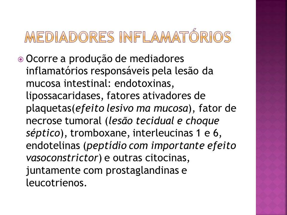  Ocorre a produção de mediadores inflamatórios responsáveis pela lesão da mucosa intestinal: endotoxinas, lipossacaridases, fatores ativadores de pla
