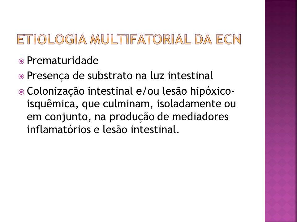  Prematuridade  Presença de substrato na luz intestinal  Colonização intestinal e/ou lesão hipóxico- isquêmica, que culminam, isoladamente ou em co