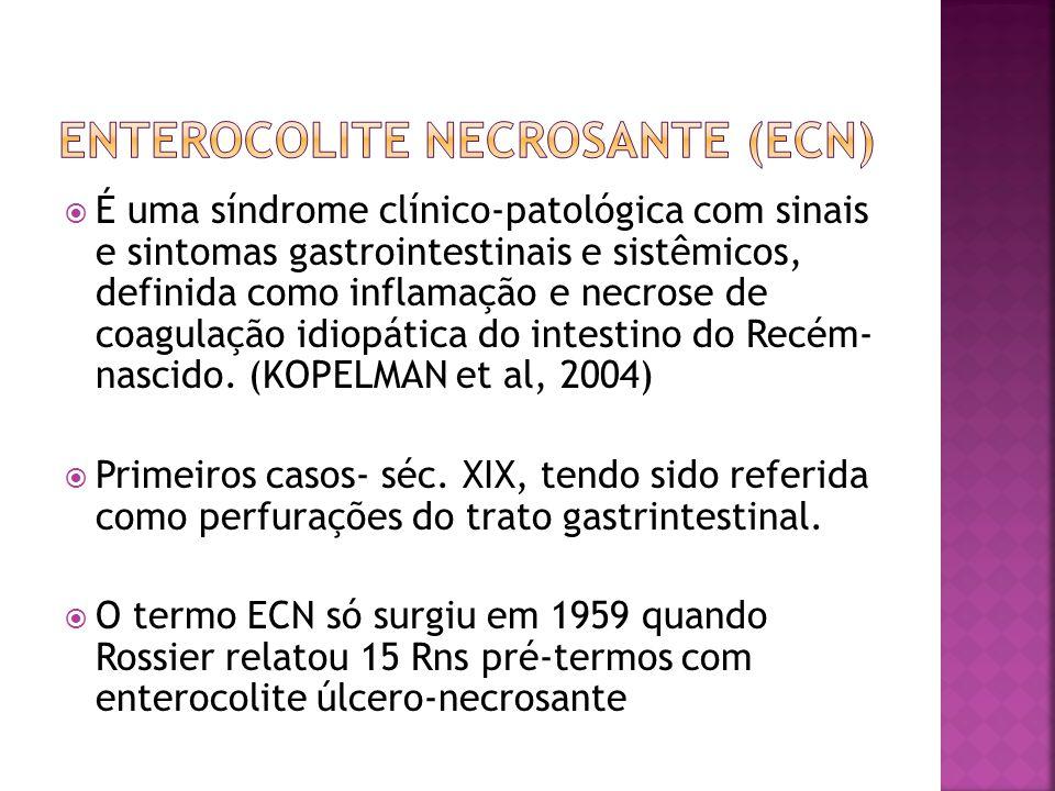  É uma síndrome clínico-patológica com sinais e sintomas gastrointestinais e sistêmicos, definida como inflamação e necrose de coagulação idiopática
