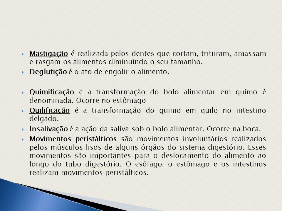 Fonte: http://www.afh.bio.br/digest/digest1.asp