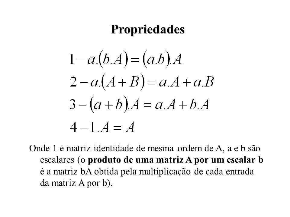 Propriedades Onde 1 é matriz identidade de mesma ordem de A, a e b são escalares (o produto de uma matriz A por um escalar b é a matriz bA obtida pela