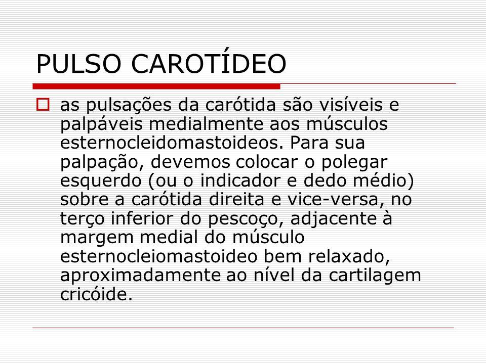 PULSO CAROTÍDEO  as pulsações da carótida são visíveis e palpáveis medialmente aos músculos esternocleidomastoideos. Para sua palpação, devemos coloc