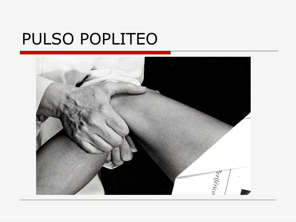 PULSO POPLITEO