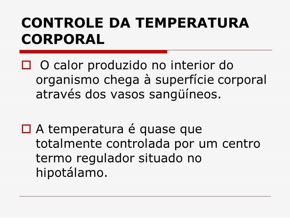 CONTROLE DA TEMPERATURA CORPORAL  O calor produzido no interior do organismo chega à superfície corporal através dos vasos sangüíneos.  A temperatur