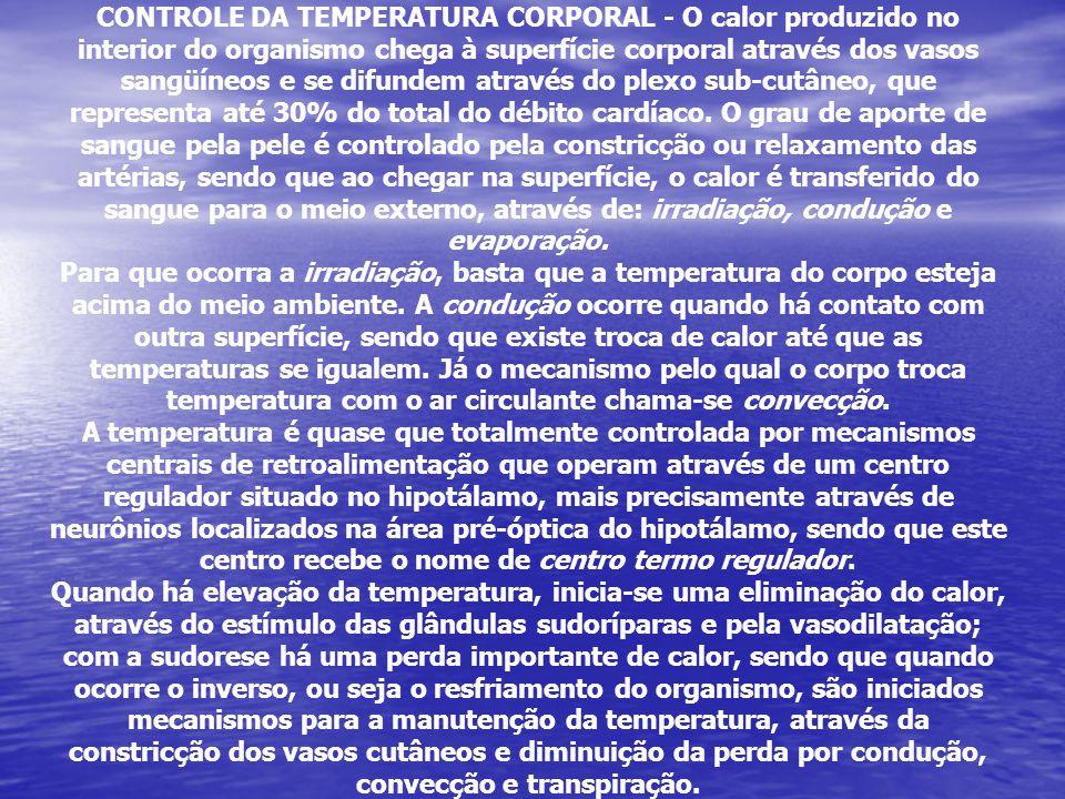 or produzido no interior do organismo or produzido no interior do organismo CONTROLE DA TEMPERATURA CORPORAL - O calor produzido no interior do organi