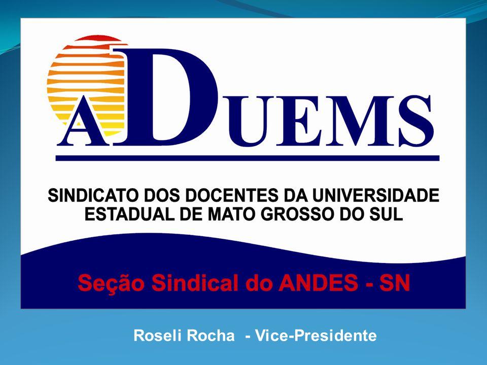 Roseli Rocha - Vice-Presidente
