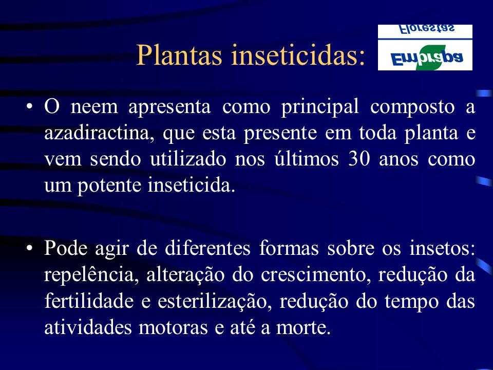 Plantas inseticidas: O neem apresenta como principal composto a azadiractina, que esta presente em toda planta e vem sendo utilizado nos últimos 30 an