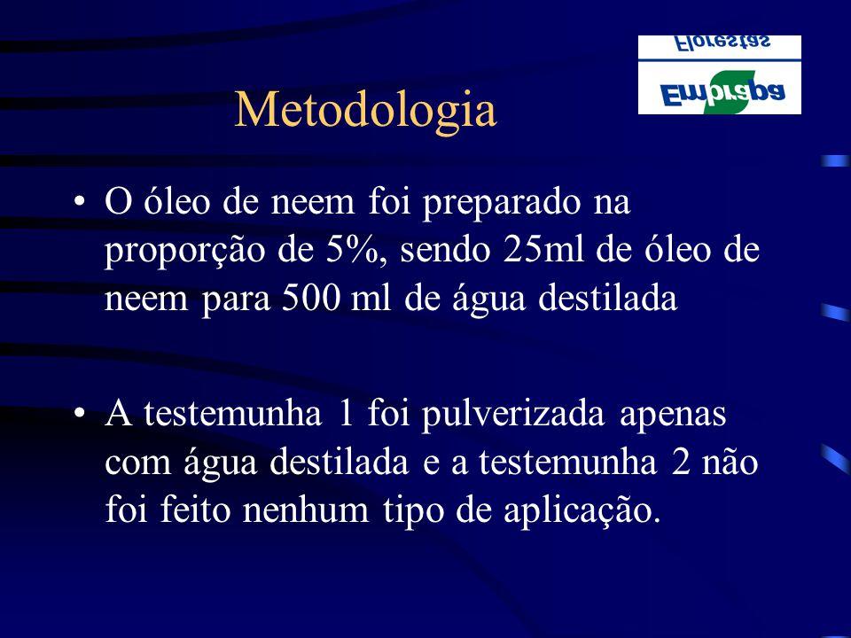 Metodologia O óleo de neem foi preparado na proporção de 5%, sendo 25ml de óleo de neem para 500 ml de água destilada A testemunha 1 foi pulverizada a