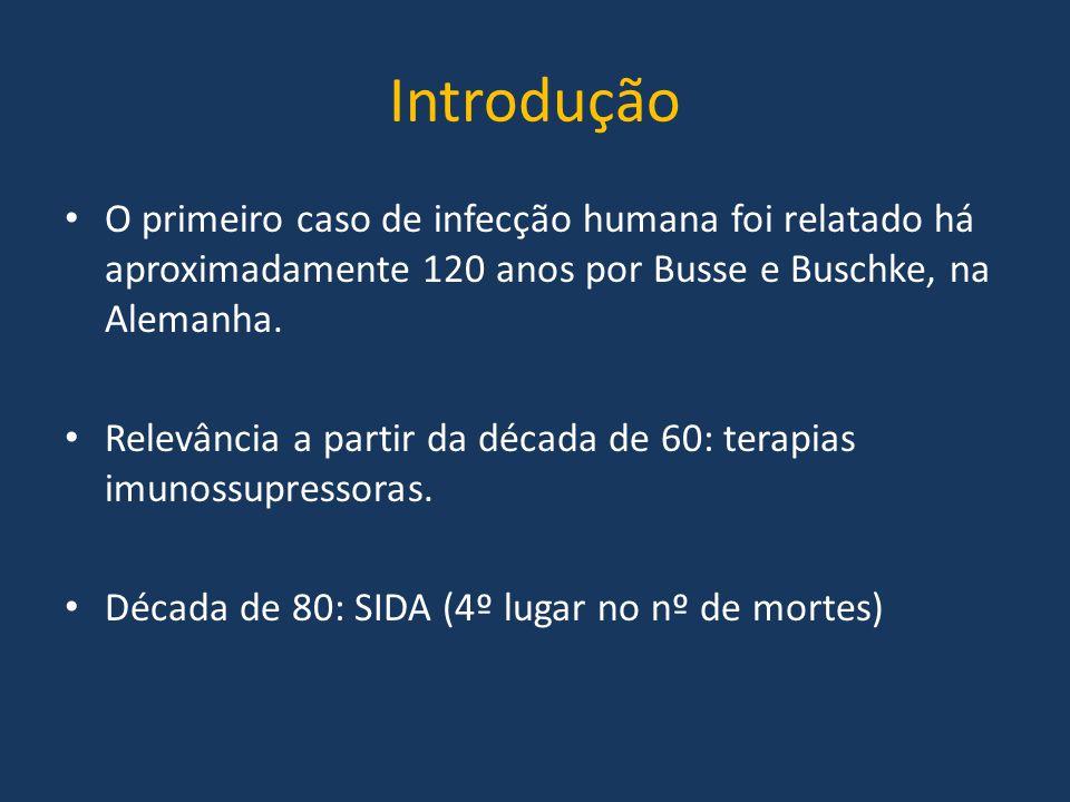 Introdução O primeiro caso de infecção humana foi relatado há aproximadamente 120 anos por Busse e Buschke, na Alemanha. Relevância a partir da década