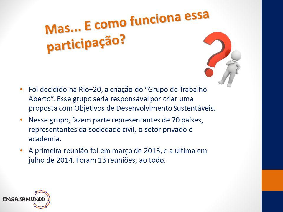 """Mas... E como funciona essa participação? Foi decidido na Rio+20, a criação do """"Grupo de Trabalho Aberto"""". Esse grupo seria responsável por criar uma"""