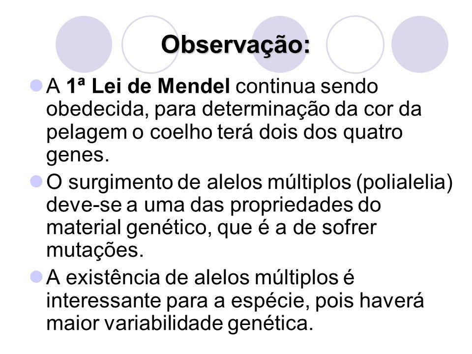Observação: A 1ª Lei de Mendel continua sendo obedecida, para determinação da cor da pelagem o coelho terá dois dos quatro genes. O surgimento de alel