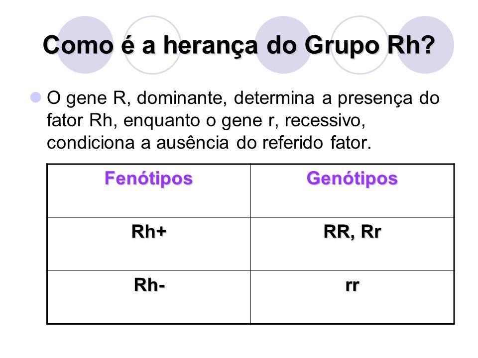 Como é a herança do Grupo Rh? O gene R, dominante, determina a presença do fator Rh, enquanto o gene r, recessivo, condiciona a ausência do referido f