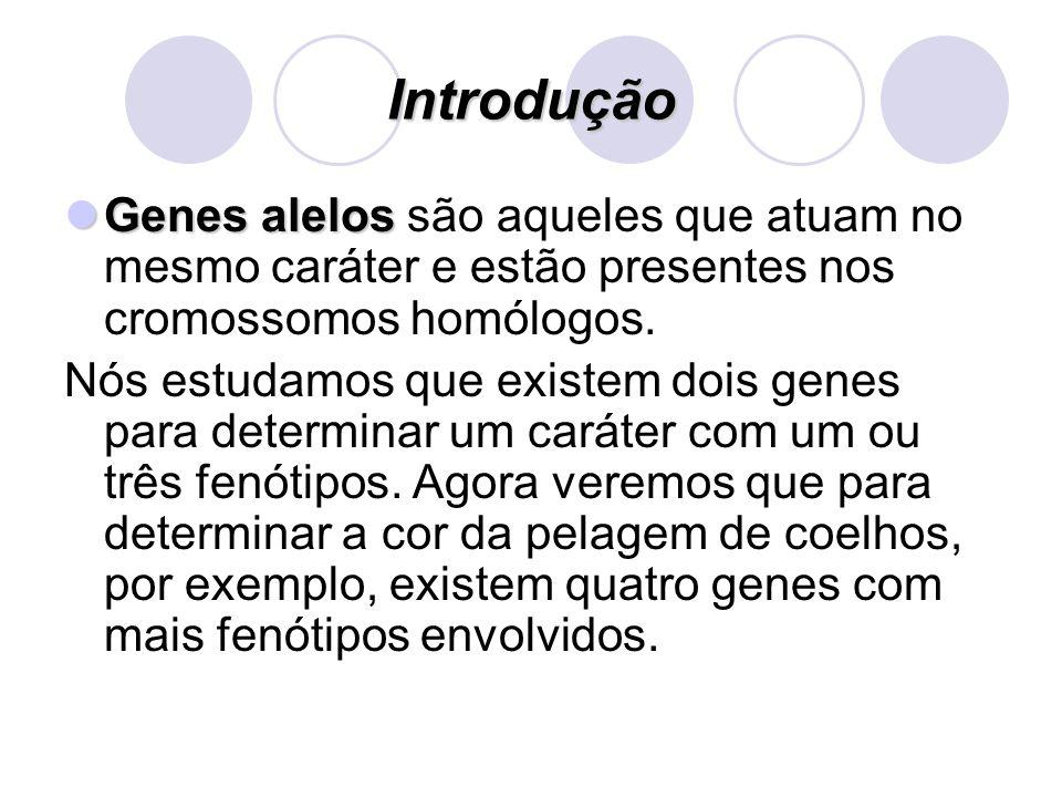 Introdução Genes alelos Genes alelos são aqueles que atuam no mesmo caráter e estão presentes nos cromossomos homólogos. Nós estudamos que existem doi