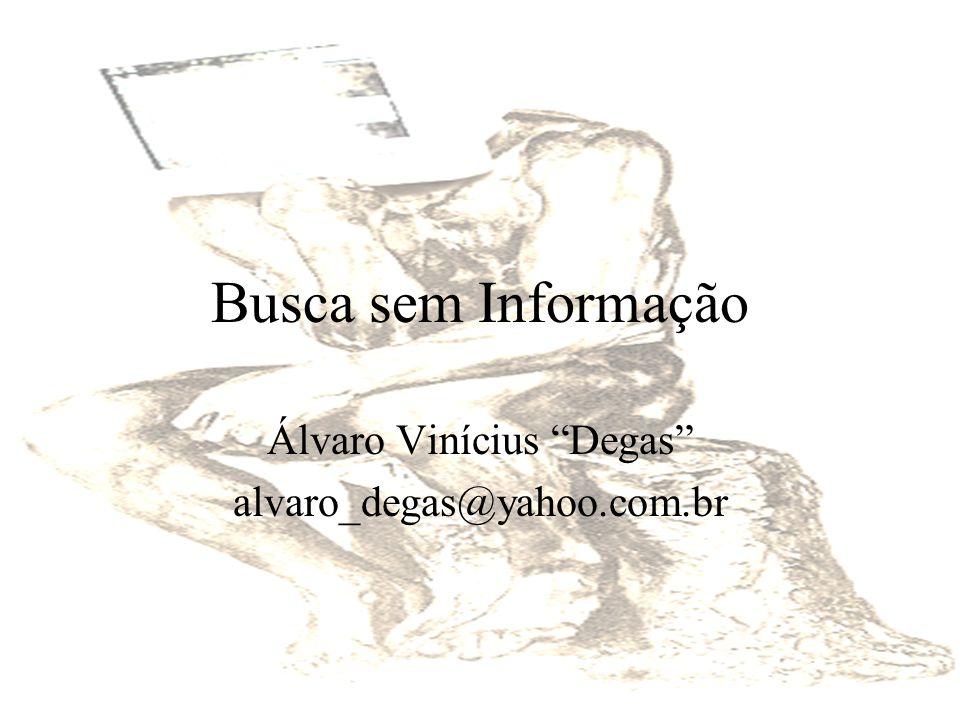 Busca sem Informação Álvaro Vinícius Degas alvaro_degas@yahoo.com.br