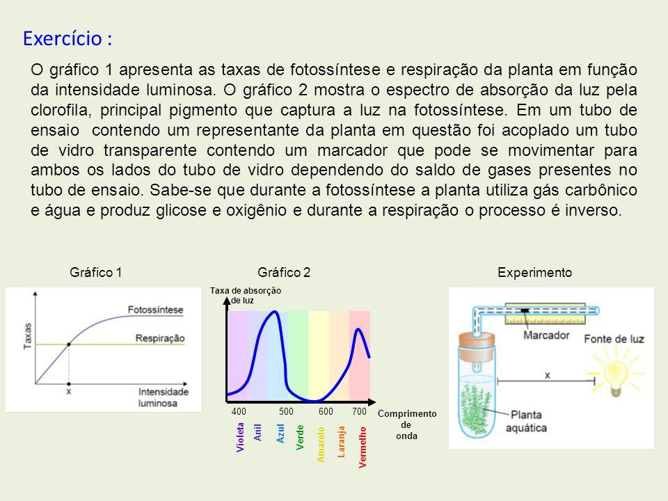 Violeta Anil Azul Verde Amarelo Laranja Vermelho 400500 600700 Taxa de absorção de luz Comprimento de onda O gráfico 1 apresenta as taxas de fotossínt