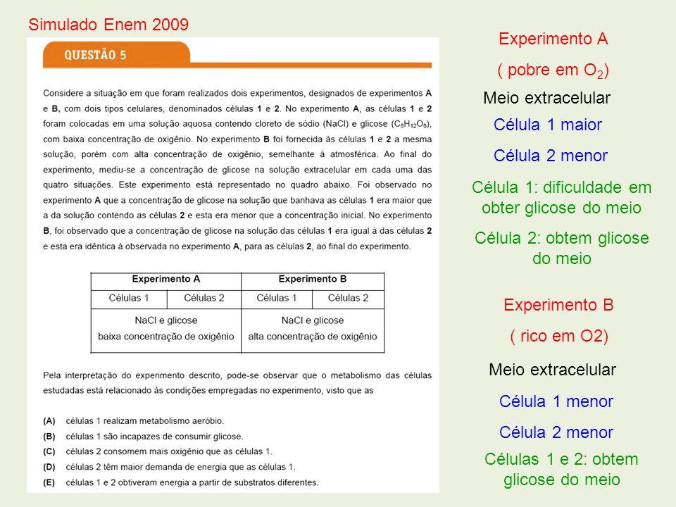 Experimento A ( pobre em O 2 ) Meio extracelular Célula 1 maior Célula 2 menor Experimento B ( rico em O2) Meio extracelular Célula 1 menor Célula 2 m