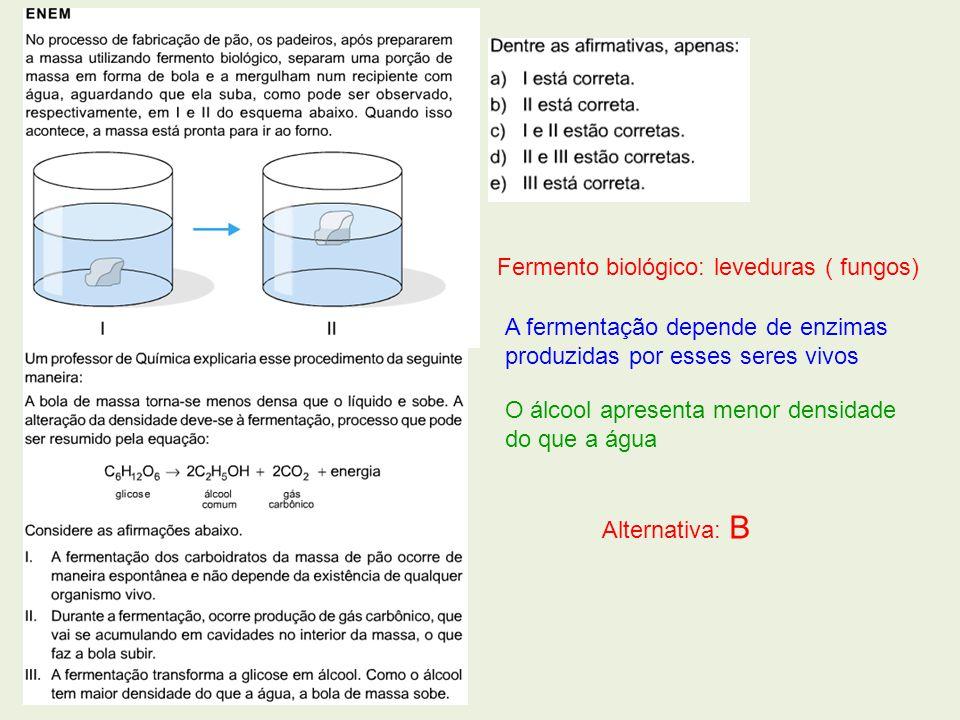 Fermento biológico: leveduras ( fungos) A fermentação depende de enzimas produzidas por esses seres vivos O álcool apresenta menor densidade do que a