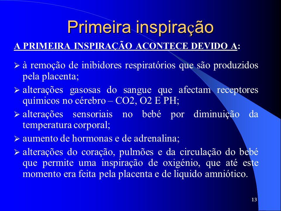 Primeira inspira ç ão A PRIMEIRA INSPIRAÇÃO ACONTECE DEVIDO A:  à remoção de inibidores respiratórios que são produzidos pela placenta;  alterações