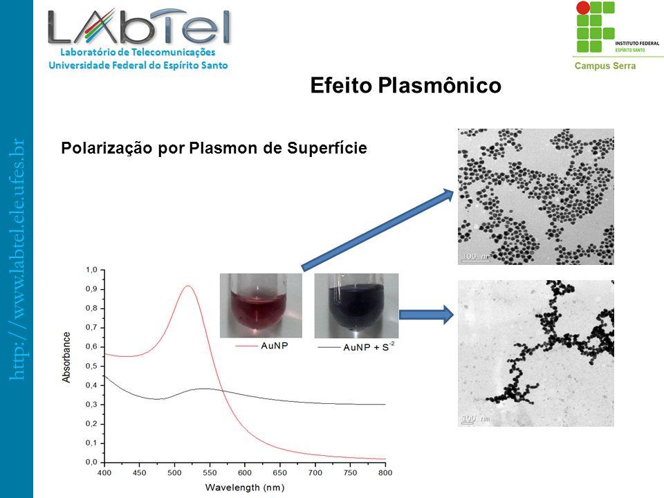 http://www.labtel.ele.ufes.br Laboratório de Telecomunicações Universidade Federal do Espírito Santo Polarização por Plasmon de Superfície Efeito Plas