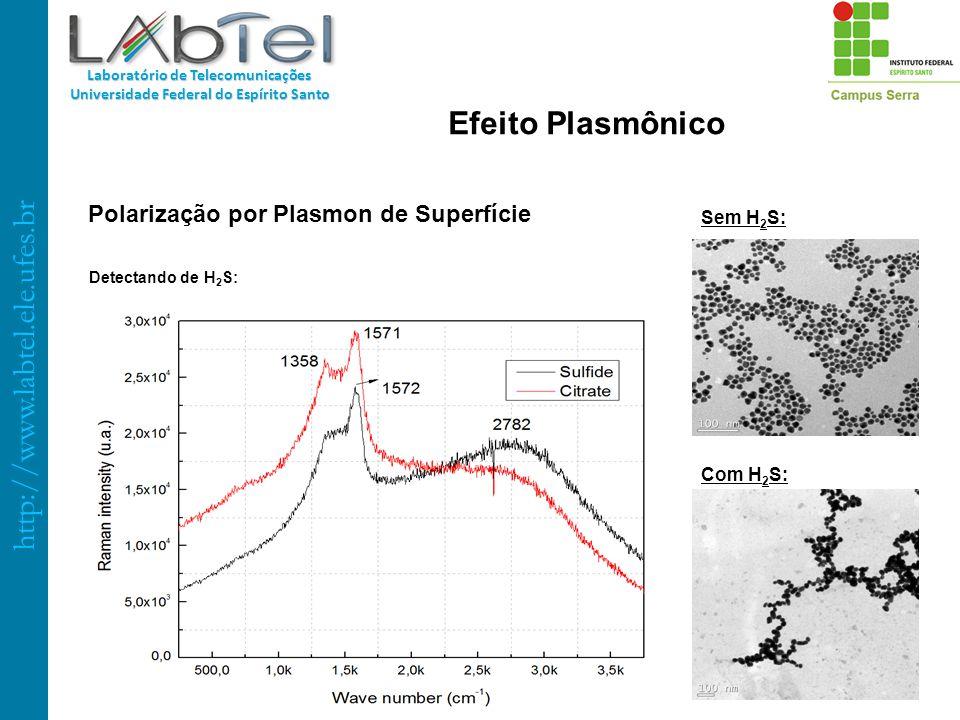 http://www.labtel.ele.ufes.br Laboratório de Telecomunicações Universidade Federal do Espírito Santo Polarização por Plasmon de Superfície Detectando
