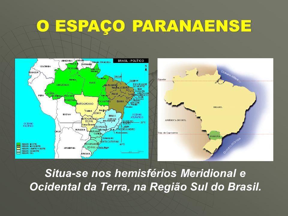 ESTADO DO PARANÁ Ilex-paraguayensis e Araucária angustifólio