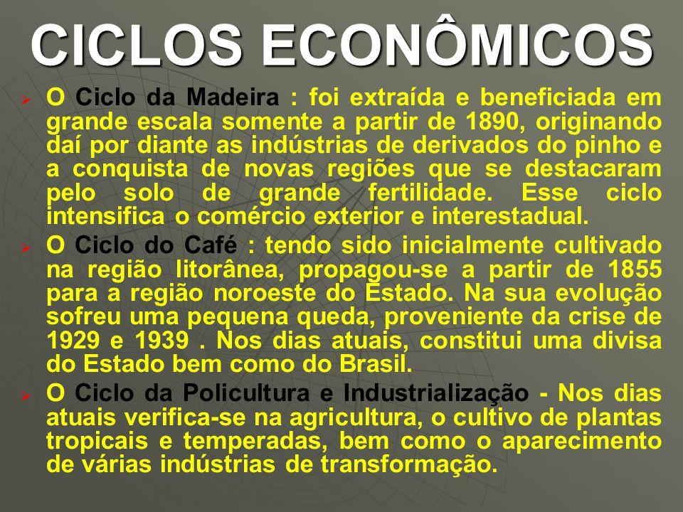   O Ciclo da Madeira : foi extraída e beneficiada em grande escala somente a partir de 1890, originando daí por diante as indústrias de derivados do pinho e a conquista de novas regiões que se destacaram pelo solo de grande fertilidade.