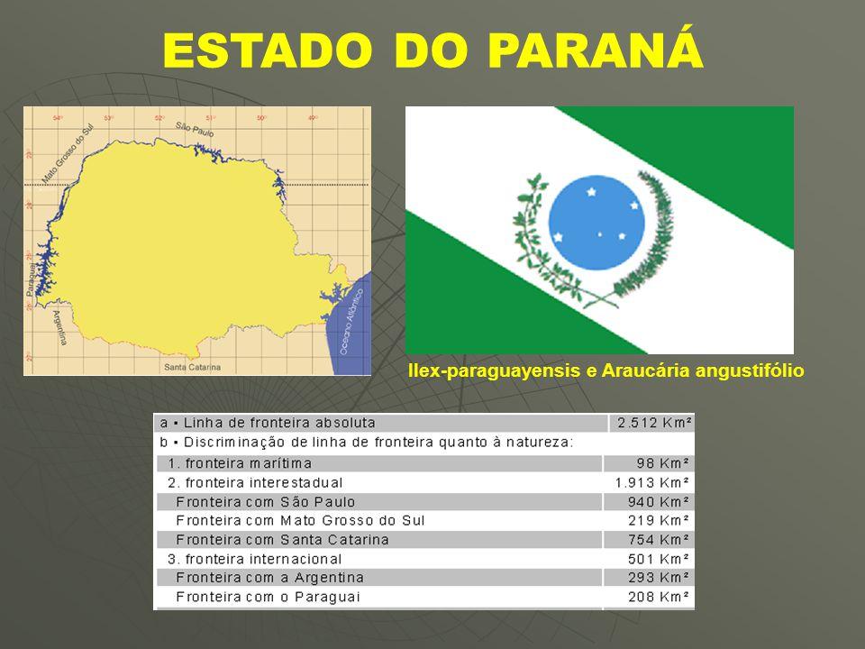 UNIDADE DO RELEVO PARANAENSE I.PLANALTOS E CHAPADAS DA BACIA DO PARANÁ; II.