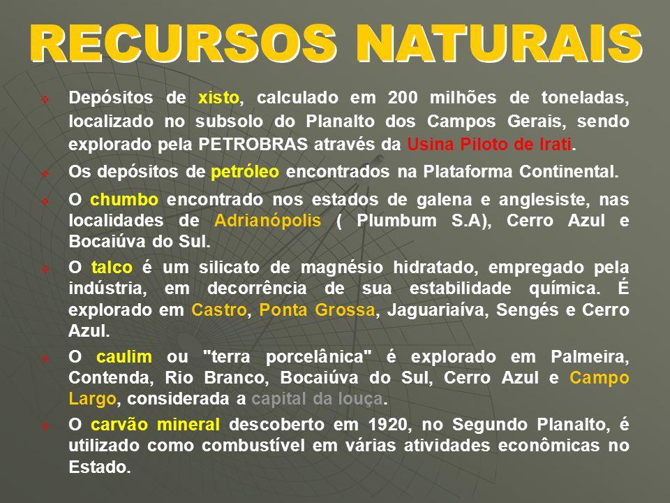   O Ciclo do Ouro : inicia-se em 1646, com a exploração das minas de Peruna, Dom Jaime, Cubatão, Itambé, Nossa Senhora da Conceição, Cachoeira e Ribeira.