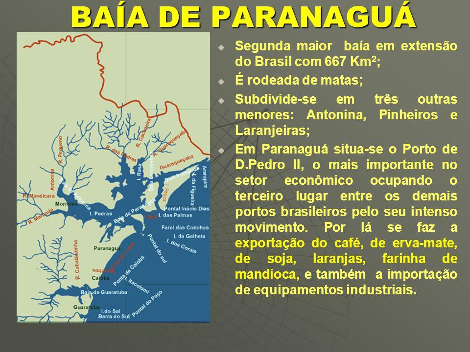 BAÍA DE PARANAGUÁ   Segunda maior baía em extensão do Brasil com 667 Km 2 ;   É rodeada de matas;   Subdivide-se em três outras menores: Antonina, Pinheiros e Laranjeiras;   Em Paranaguá situa-se o Porto de D.Pedro II, o mais importante no setor econômico ocupando o terceiro lugar entre os demais portos brasileiros pelo seu intenso movimento.
