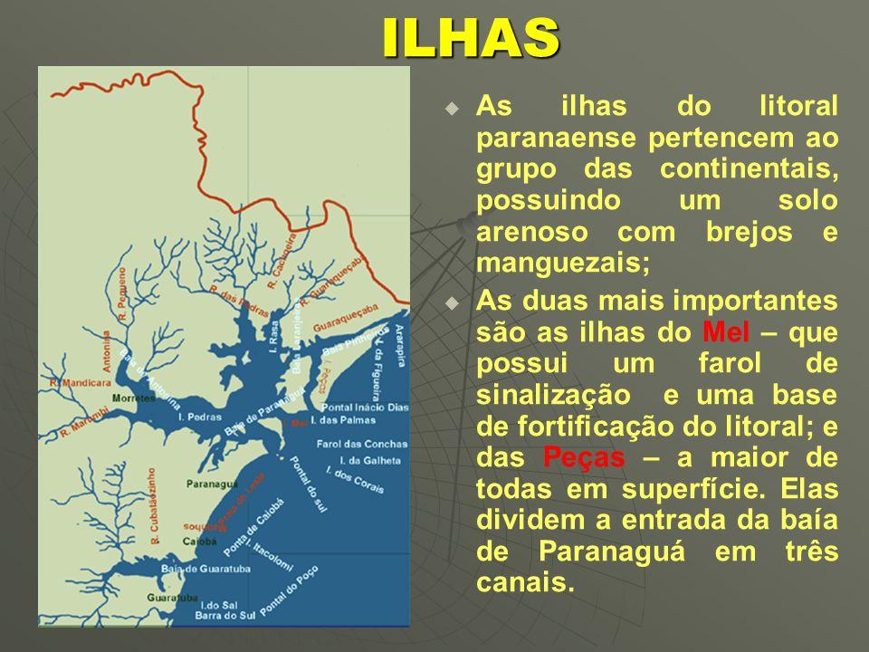   O Paraná é um Estado agrícola por excelência, que vive sob o regime da policultura, cultivando plantas tropicais e temperadas, sendo considerado o celeiro agrícola do Brasil.