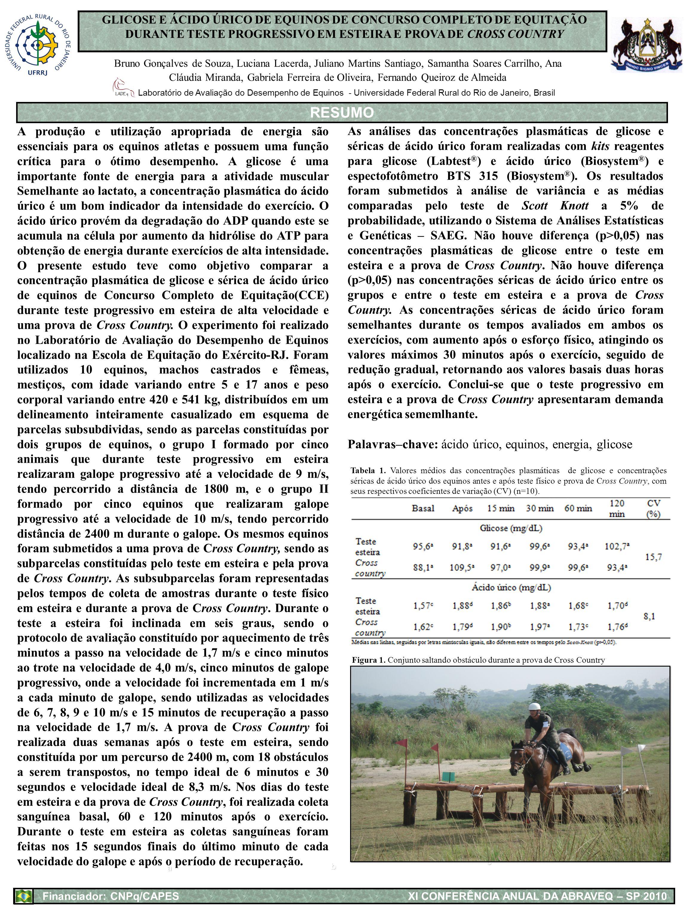 GLICOSE E ÁCIDO ÚRICO DE EQUINOS DE CONCURSO COMPLETO DE EQUITAÇÃO DURANTE TESTE PROGRESSIVO EM ESTEIRA E PROVA DE CROSS COUNTRY Bruno Gonçalves de So