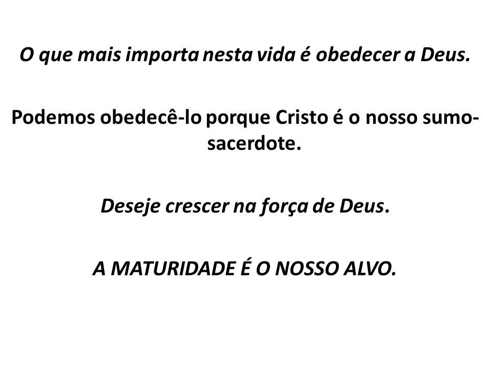 O que mais importa nesta vida é obedecer a Deus. Podemos obedecê-lo porque Cristo é o nosso sumo- sacerdote. Deseje crescer na força de Deus. A MATURI