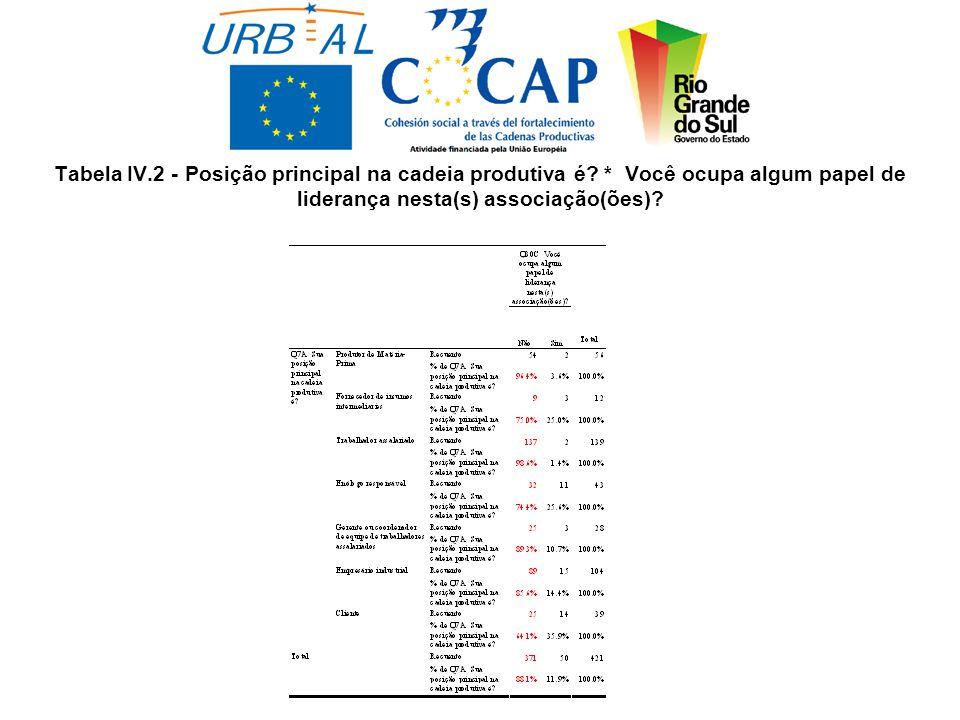 Tabela IV.2 - Posição principal na cadeia produtiva é.