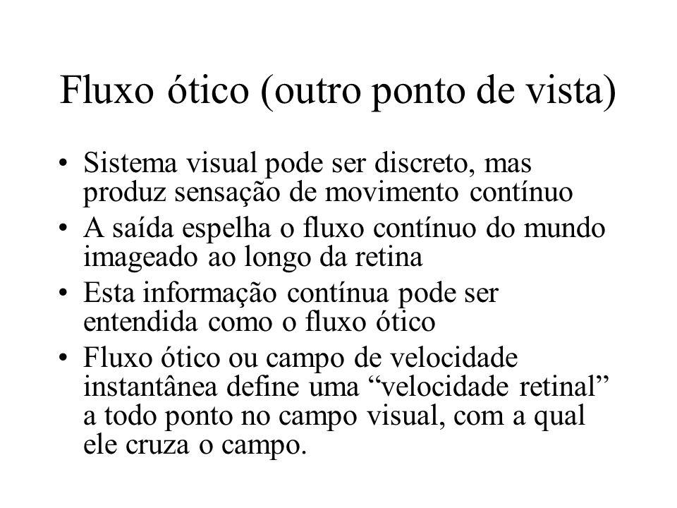 Fluxo ótico (outro ponto de vista) Sistema visual pode ser discreto, mas produz sensação de movimento contínuo A saída espelha o fluxo contínuo do mun