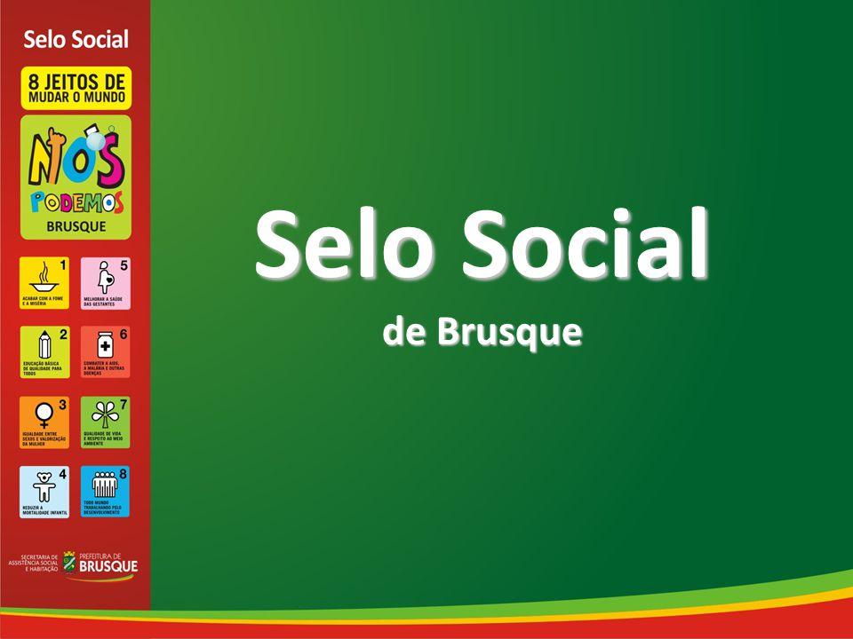 O Selo Social de Brusque é uma estratégia para estimular o cumprimento dos Objetivos de Desenvolvimento do Milênio (ODM), reconhecendo órgãos públicos, empresas e organizações não governamentais, as quais realizam investimentos internos e externos em prol da sociedade Brusquense.