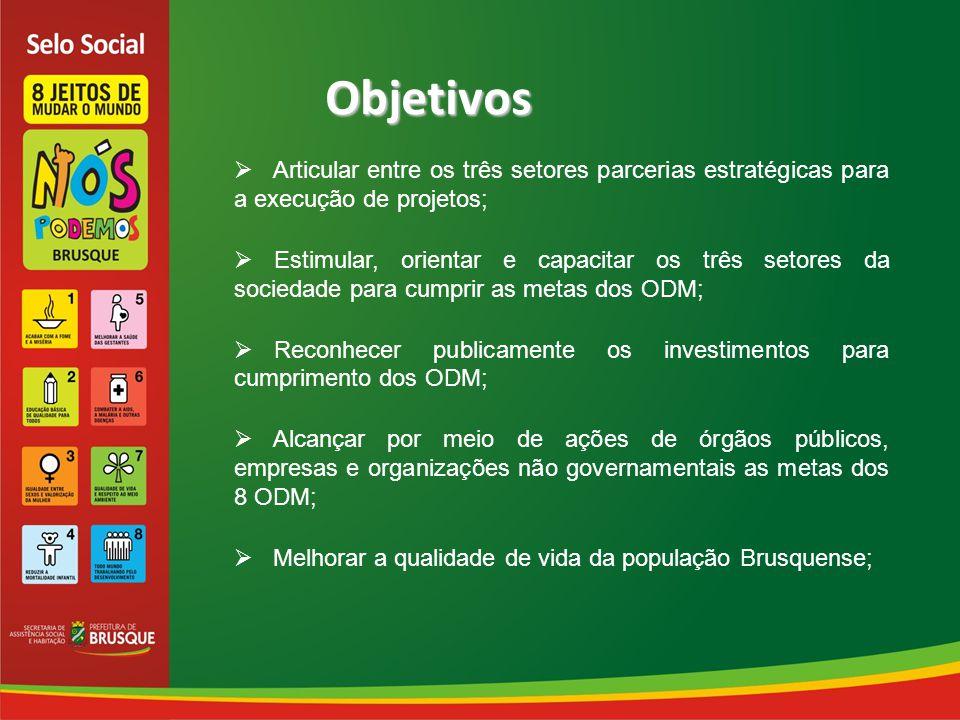 Objetivos  Articular entre os três setores parcerias estratégicas para a execução de projetos;  Estimular, orientar e capacitar os três setores da sociedade para cumprir as metas dos ODM;  Reconhecer publicamente os investimentos para cumprimento dos ODM;  Alcançar por meio de ações de órgãos públicos, empresas e organizações não governamentais as metas dos 8 ODM;  Melhorar a qualidade de vida da população Brusquense;