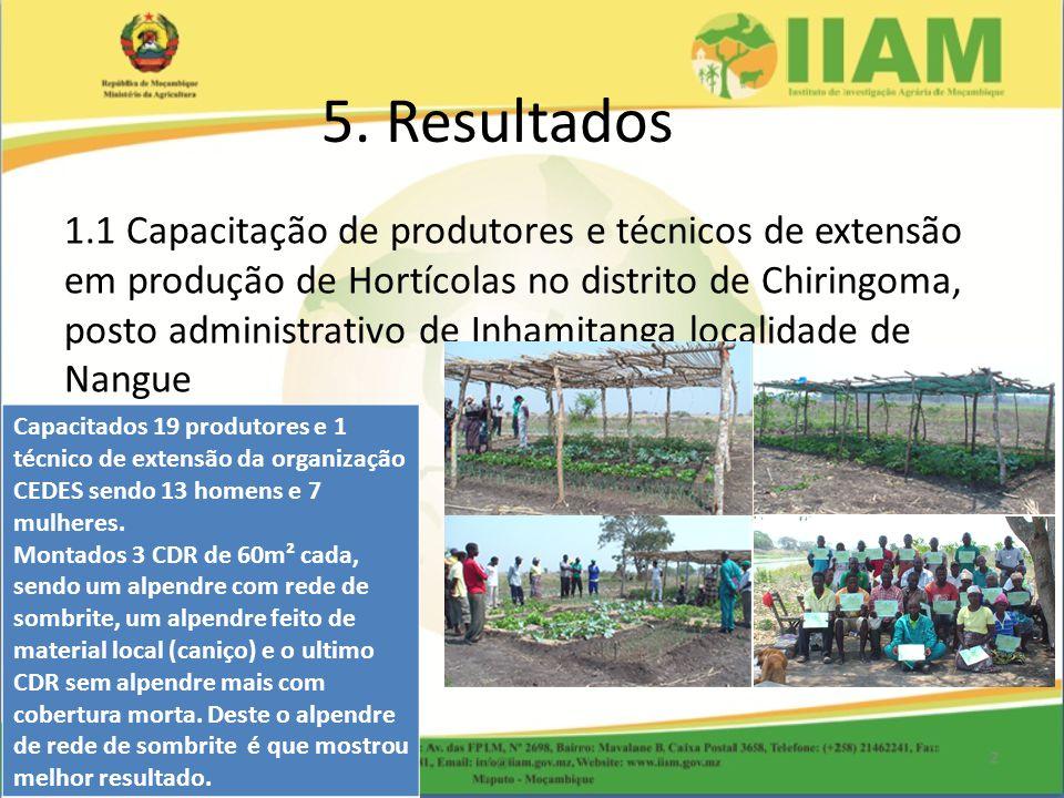 1.1 Capacitação de produtores e técnicos de extensão em produção de Hortícolas no distrito de Chiringoma, posto administrativo de Inhamitanga localidade de Nangue 5.