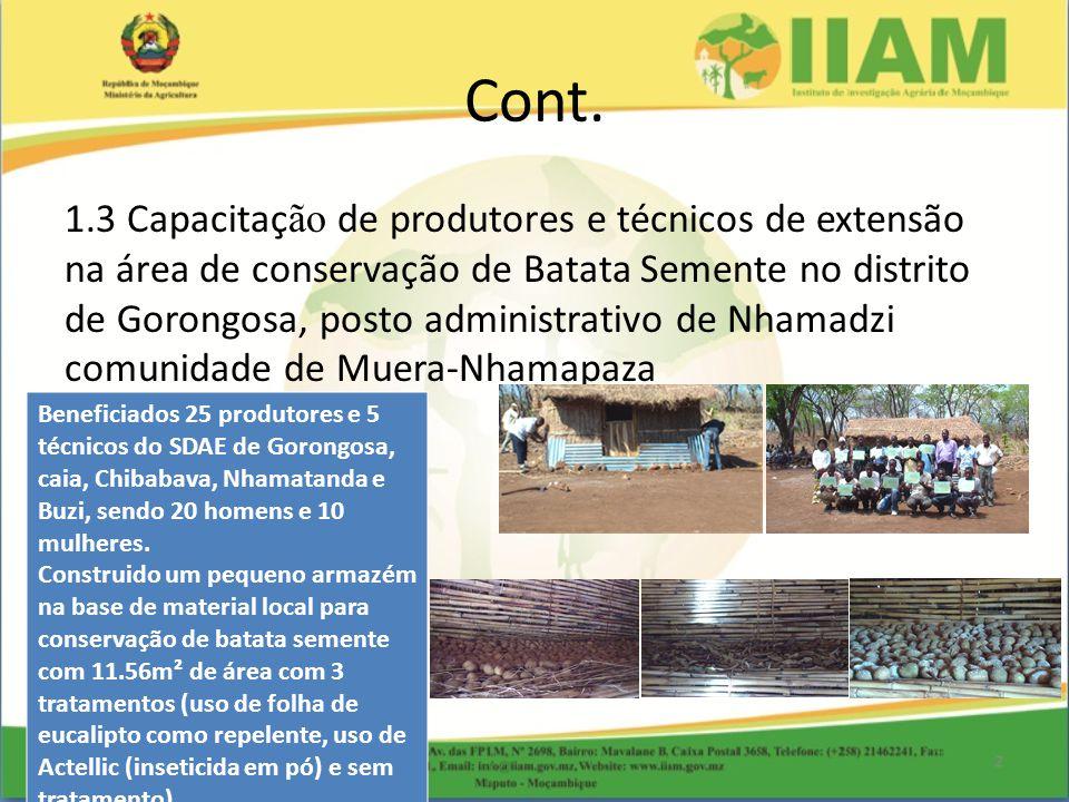 Cont. 1.3 Capacitaç ão de produtores e técnicos de extensão na área de conservação de Batata Semente no distrito de Gorongosa, posto administrativo de