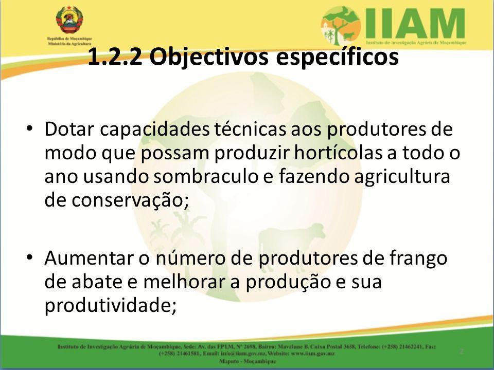 1.2.2 Objectivos específicos Dotar capacidades técnicas aos produtores de modo que possam produzir hortícolas a todo o ano usando sombraculo e fazendo agricultura de conservação; Aumentar o número de produtores de frango de abate e melhorar a produção e sua produtividade;
