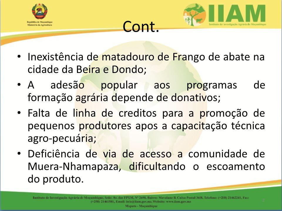 Cont. Inexistência de matadouro de Frango de abate na cidade da Beira e Dondo; A adesão popular aos programas de formação agrária depende de donativos