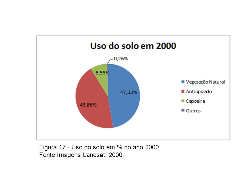 Figura 17 - Uso do solo em % no ano 2000 Fonte:Imagens Landsat, 2000.