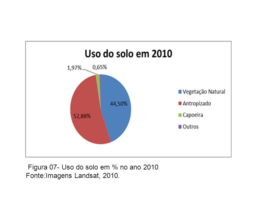 Figura 07- Uso do solo em % no ano 2010 Fonte:Imagens Landsat, 2010.