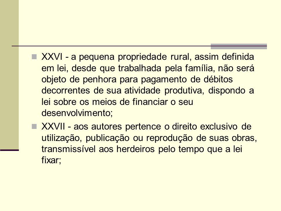 XXVI - a pequena propriedade rural, assim definida em lei, desde que trabalhada pela família, não será objeto de penhora para pagamento de débitos dec