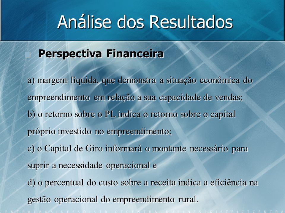 Análise dos Resultados Perspectiva Financeira Perspectiva Financeira a) margem líquida, que demonstra a situação econômica do empreendimento em relaçã