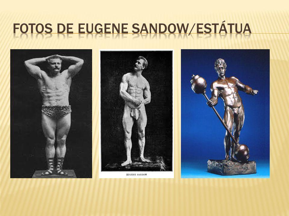  Até a alguns anos atrás a musculação era restrita a fisiculturistas e levantadores de peso.