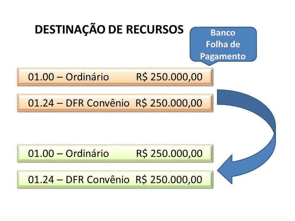 01.24 – DFR Convênio R$ 250.000,00 01.00 – Ordinário R$ 250.000,00 DESTINAÇÃO DE RECURSOS 01.00 – Ordinário R$ 250.000,00 01.24 – DFR Convênio R$ 250.