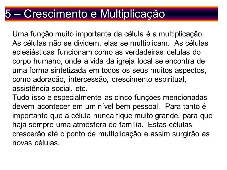 5 – Crescimento e Multiplicação Uma função muito importante da célula é a multiplicação.