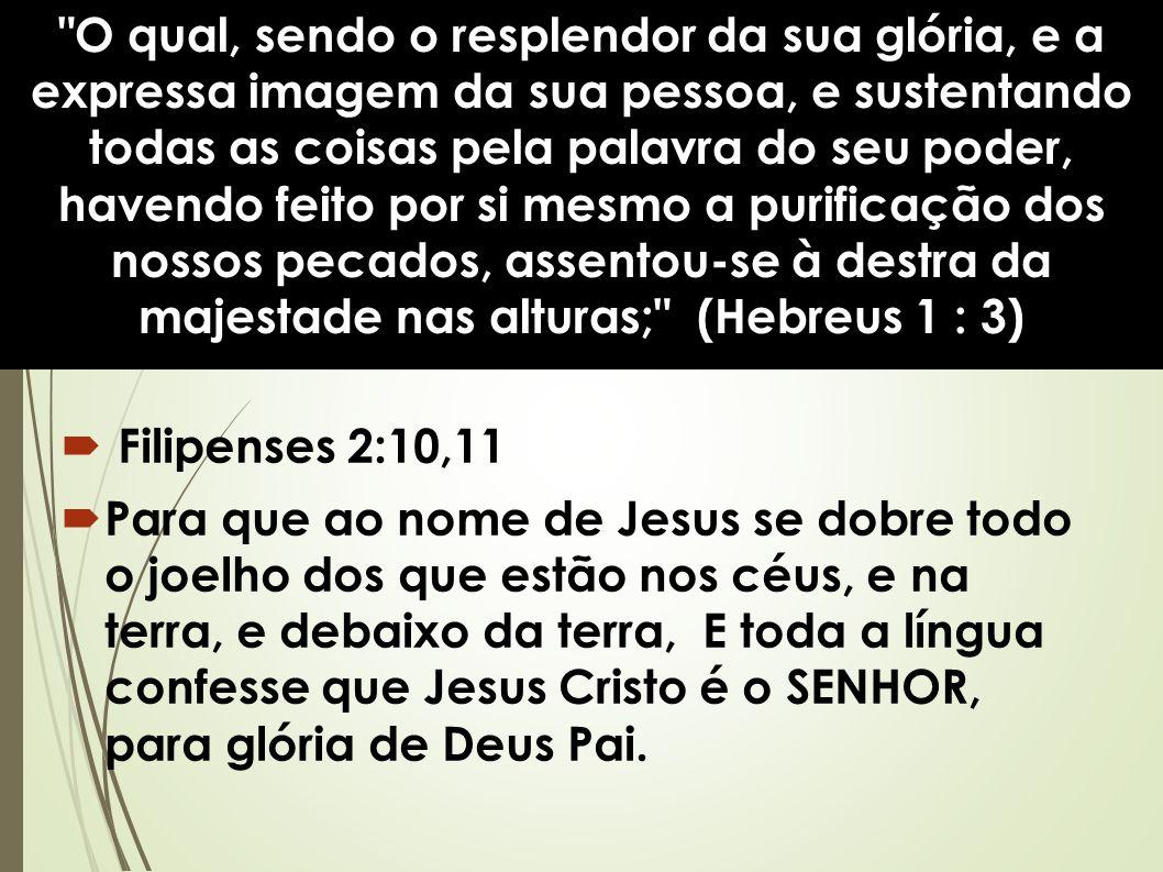 O qual, sendo o resplendor da sua glória, e a expressa imagem da sua pessoa, e sustentando todas as coisas pela palavra do seu poder, havendo feito por si mesmo a purificação dos nossos pecados, assentou-se à destra da majestade nas alturas; (Hebreus 1 : 3)  Filipenses 2:10,11  Para que ao nome de Jesus se dobre todo o joelho dos que estão nos céus, e na terra, e debaixo da terra, E toda a língua confesse que Jesus Cristo é o SENHOR, para glória de Deus Pai.